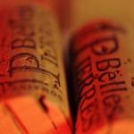 14_Domaine viticole